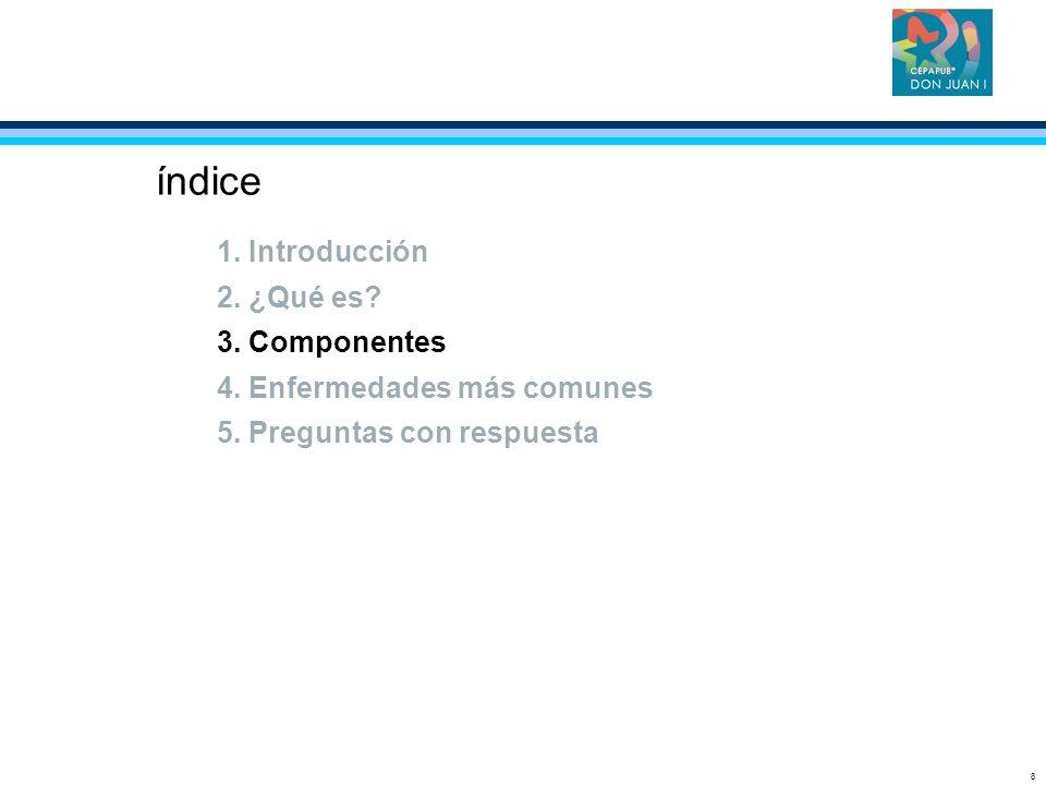 8 índice 1. Introducción 2. ¿Qué es? 3. Componentes 4. Enfermedades más comunes 5. Preguntas con respuesta
