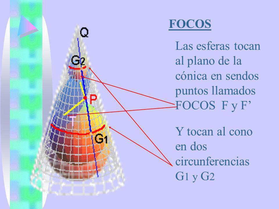 FOCOS Las esferas tocan al plano de la cónica en sendos puntos llamados FOCOS F y F Y tocan al cono en dos circunferencias G 1 y G 2