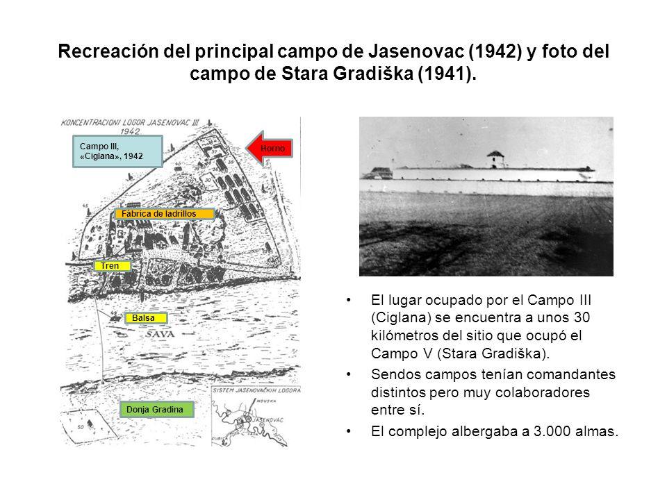 Recreación del principal campo de Jasenovac (1942) y foto del campo de Stara Gradiška (1941). El lugar ocupado por el Campo III (Ciglana) se encuentra