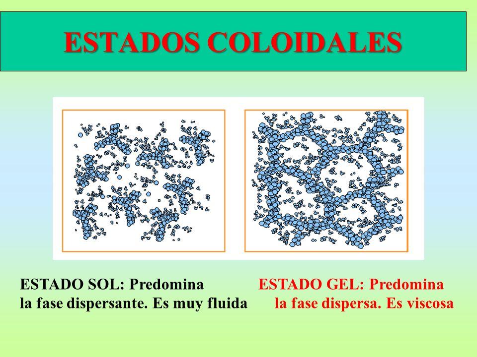 ESTADOS COLOIDALES ESTADO SOL: PredominaESTADO GEL: Predomina la fase dispersante. Es muy fluida la fase dispersa. Es viscosa
