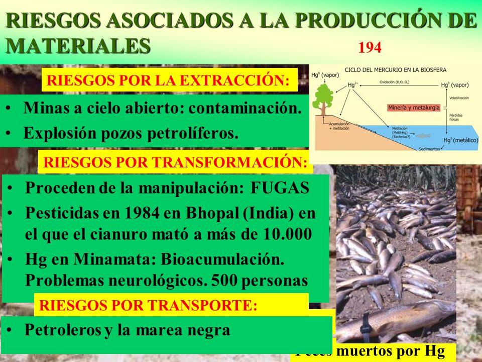 RIESGOS ASOCIADOS A LA PRODUCCIÓN DE MATERIALES RIESGOS ASOCIADOS A LA PRODUCCIÓN DE MATERIALES 194 Peces muertos por Hg Bhopal: Fábrica de pesticidas
