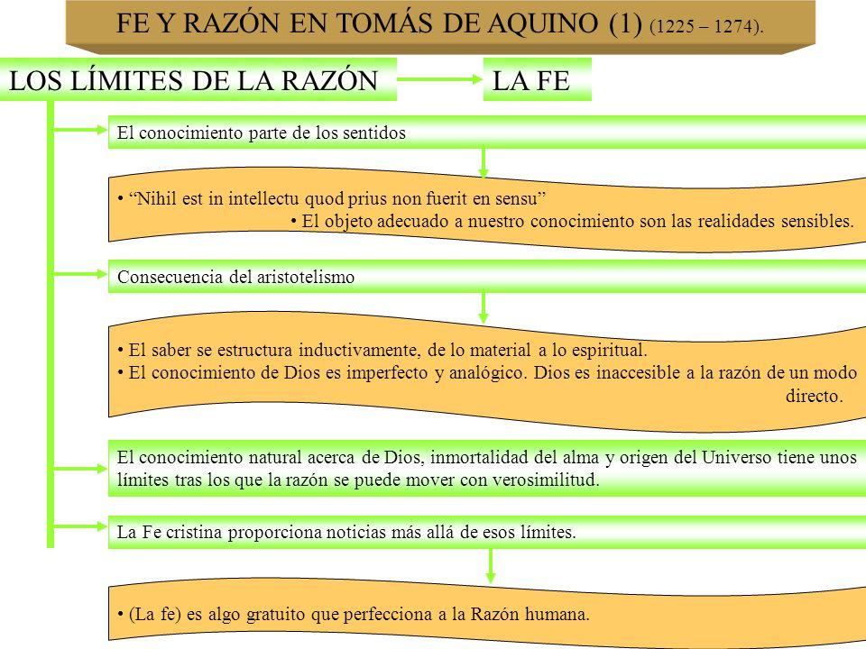 FE Y RAZÓN EN TOMÁS DE AQUINO (1) (1225 – 1274). LOS LÍMITES DE LA RAZÓNLA FE El conocimiento parte de los sentidos Nihil est in intellectu quod prius