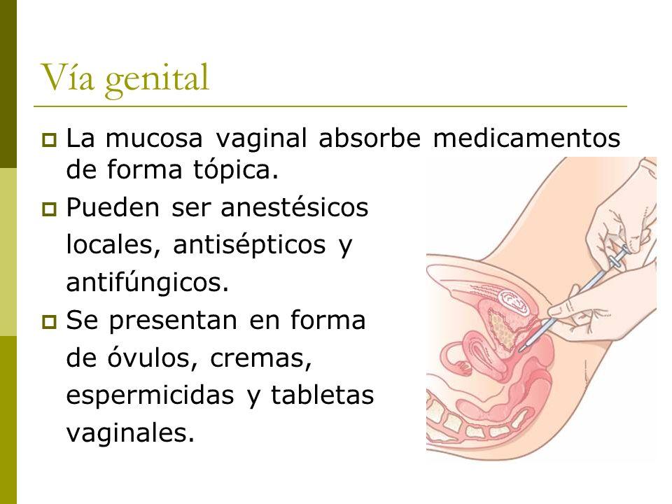 Vía genital La mucosa vaginal absorbe medicamentos de forma tópica. Pueden ser anestésicos locales, antisépticos y antifúngicos. Se presentan en forma