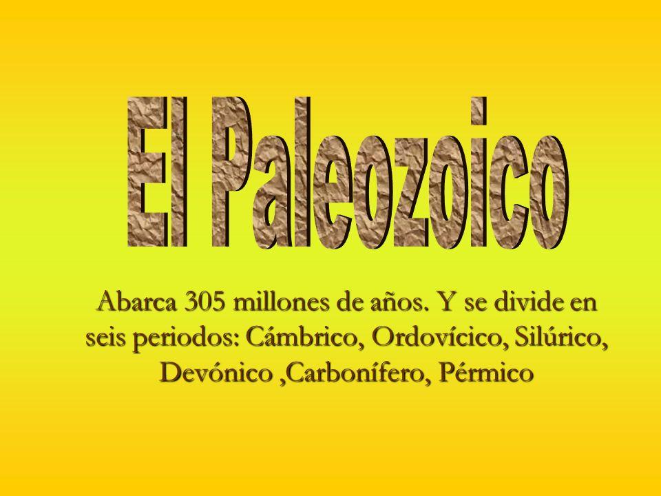 Acontecimientos geológicos en el paleozoico Fragmentación de RodiniaFragmentación de Rodinia Comienzo de formación de Pangea en el CarboníferoComienzo de formación de Pangea en el Carbonífero Deposito de caliza y en las plataformas continentales se depositaron arcillas y arenas.Deposito de caliza y en las plataformas continentales se depositaron arcillas y arenas.