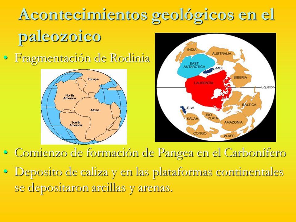 Acontecimientos geológicos en el Paleozoico Desarrollo de dos glaciaciones en el Ordovícico y en el Carbonífero.Desarrollo de dos glaciaciones en el Ordovícico y en el Carbonífero.