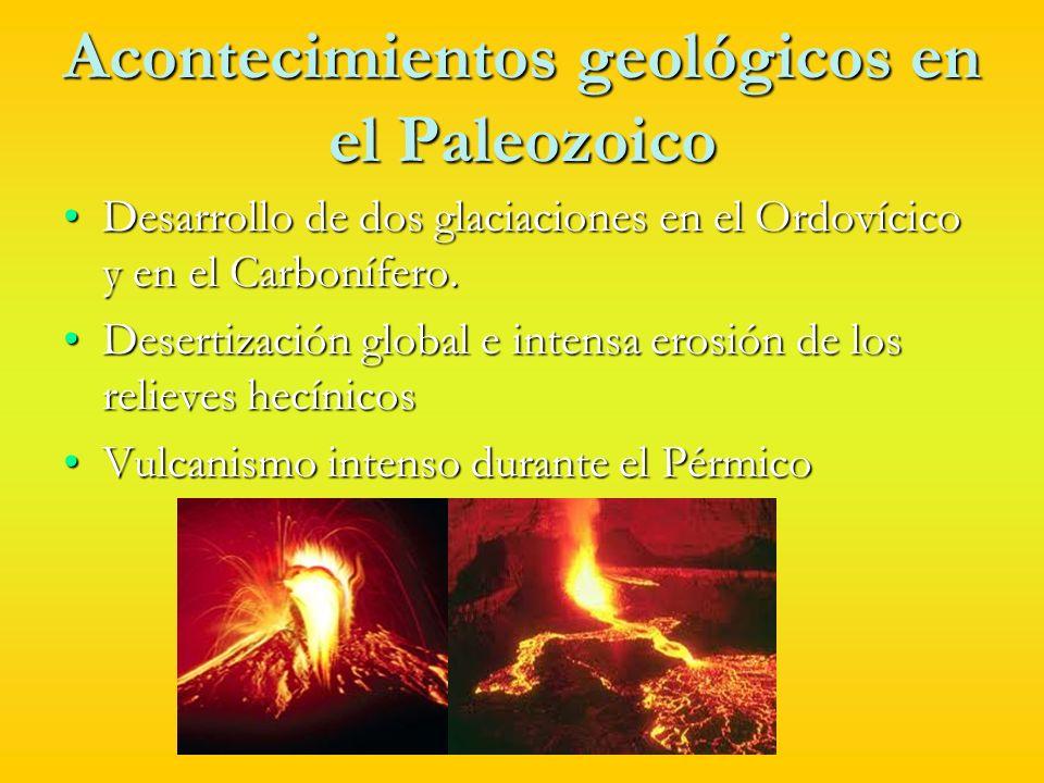 El Paleozoico en España Los materiales Paleozoicos forman el macizo ibérico, el cual está recubierto por rocas sedimentarias de Mesozoico y del Cenozoico