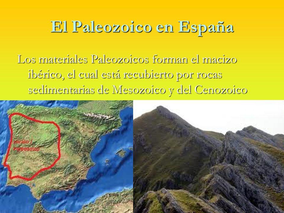 El Paleozoico en España El Cámbrico, El Ordovícico y Silúrico están representados por pizarras y cuarcita.