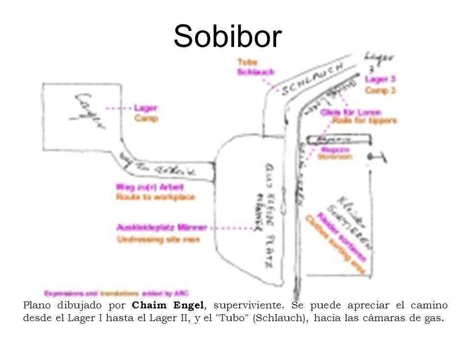 Sobibor Plano dibujado por Chaim Engel, superviviente. Se puede apreciar el camino desde el Lager I hasta el Lager II, y el
