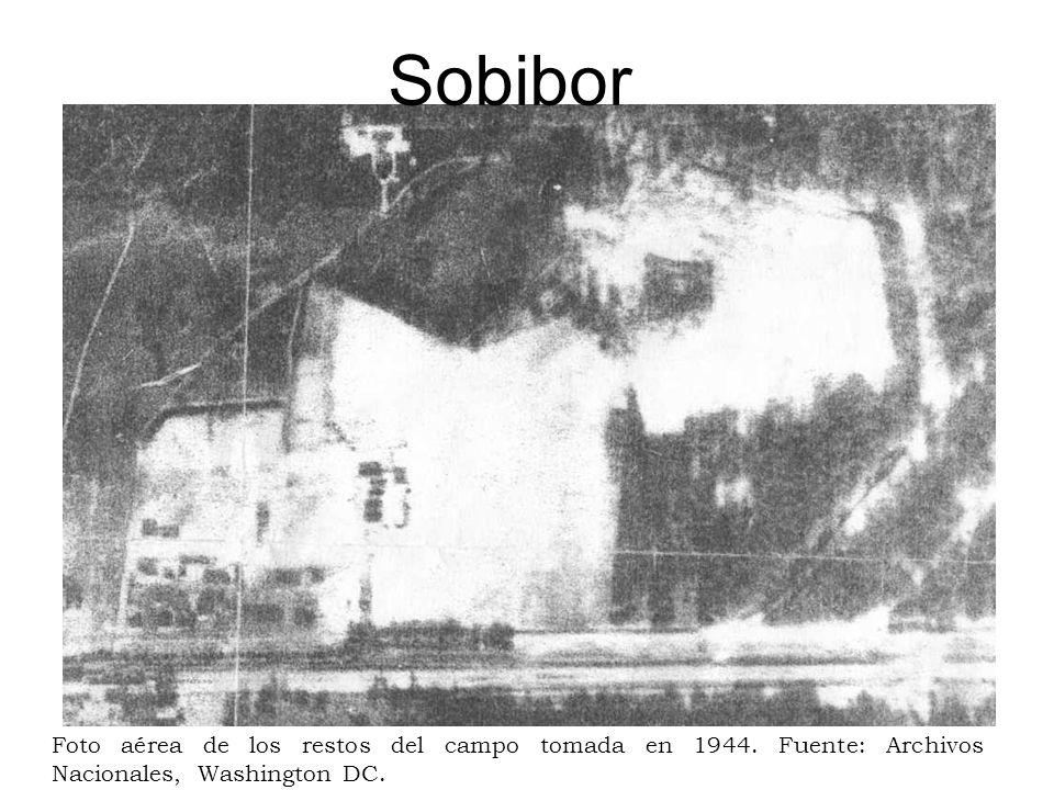 Sobibor Foto aérea de los restos del campo tomada en 1944. Fuente: Archivos Nacionales, Washington DC.