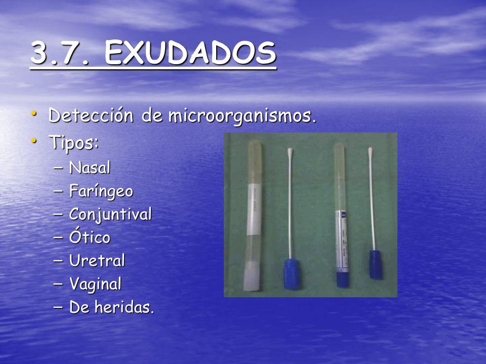 3.7. EXUDADOS Detección de microorganismos. Detección de microorganismos. Tipos: Tipos: – Nasal – Faríngeo – Conjuntival – Ótico – Uretral – Vaginal –