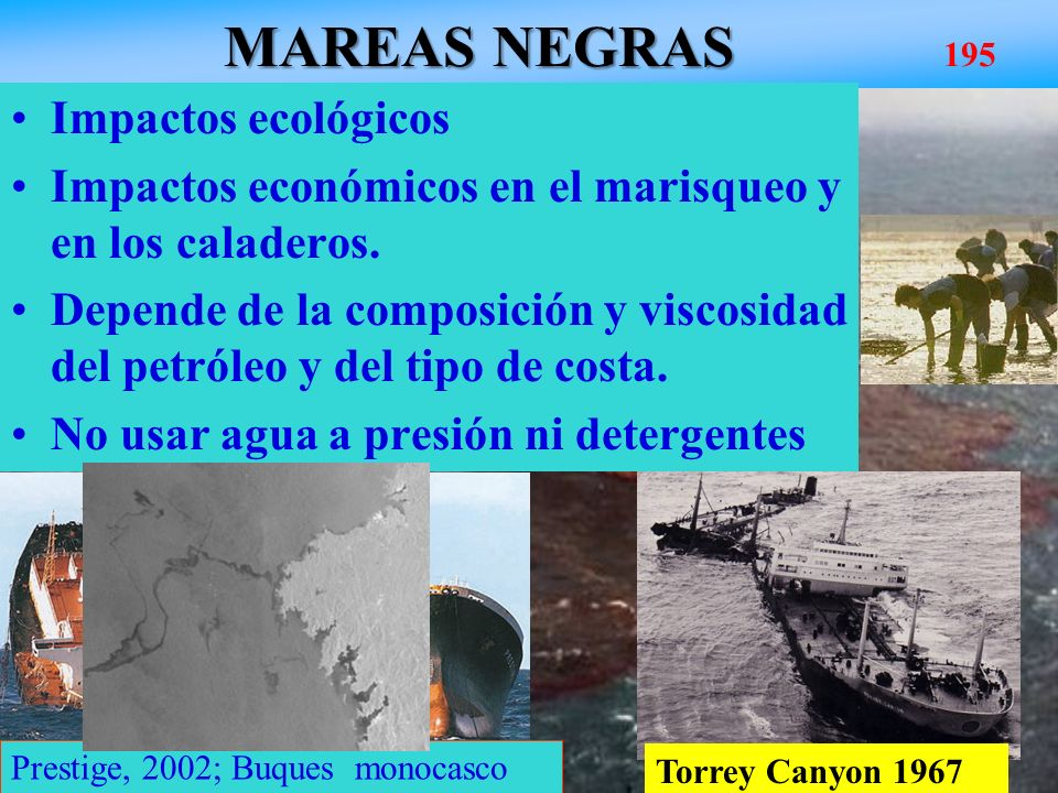 MAREAS NEGRAS MAREAS NEGRAS 195 Amoco Cadiz, 1978; 2x10 5 Tn Bretaña Impactos ecológicos Impactos económicos en el marisqueo y en los caladeros. Depen