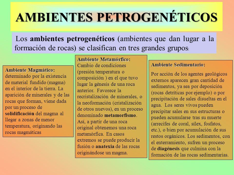 Los ambientes petrogenéticos (ambientes que dan lugar a la formación de rocas) se clasifican en tres grandes grupos : Ambiente Magmático Ambiente Magm