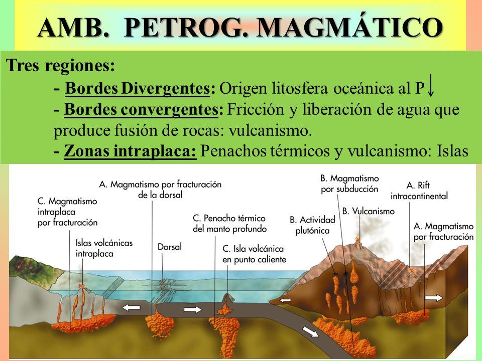 AMB. PETROG. MAGMÁTICO Tres regiones: - Bordes Divergentes: Origen litosfera oceánica al P - Bordes convergentes: Fricción y liberación de agua que pr
