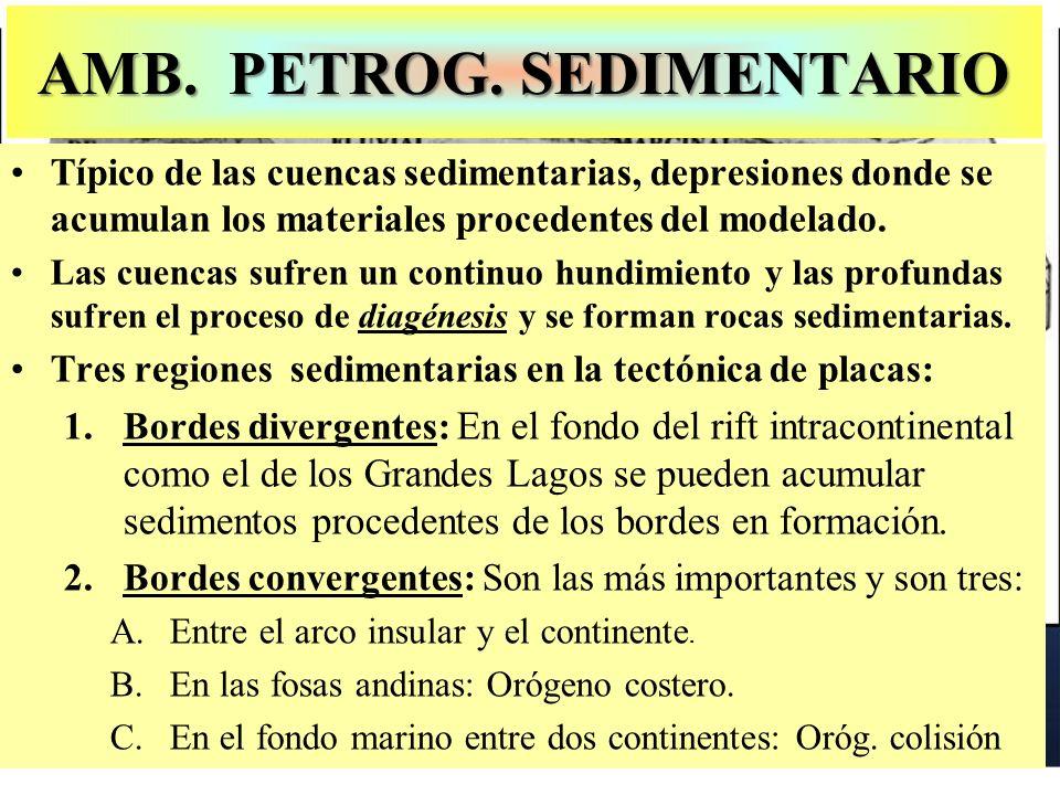 AMB. PETROG. SEDIMENTARIO Típico de las cuencas sedimentarias, depresiones donde se acumulan los materiales procedentes del modelado. Las cuencas sufr