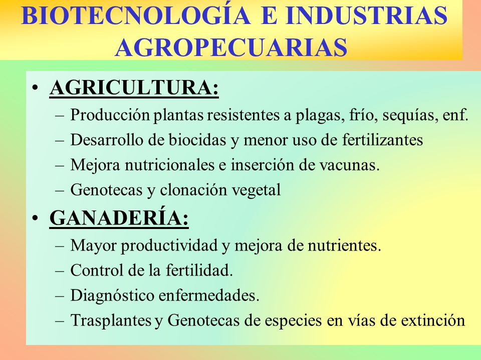 BIOTECNOLOGÍA E INDUSTRIAS AGROPECUARIAS AGRICULTURA: –Producción plantas resistentes a plagas, frío, sequías, enf. –Desarrollo de biocidas y menor us