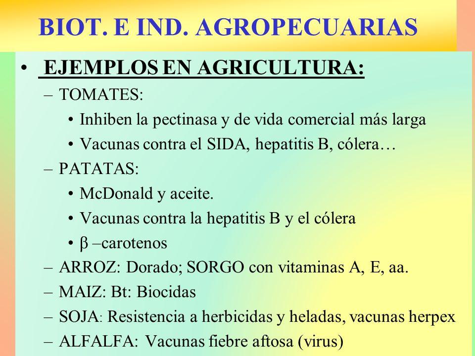 BIOT. E IND. AGROPECUARIAS EJEMPLOS EN AGRICULTURA: –TOMATES: Inhiben la pectinasa y de vida comercial más larga Vacunas contra el SIDA, hepatitis B,