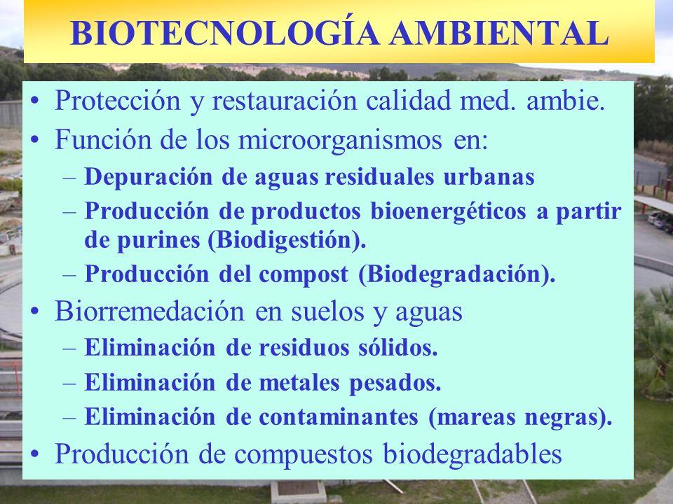 BIOTECNOLOGÍA AMBIENTAL Protección y restauración calidad med. ambie. Función de los microorganismos en: –Depuración de aguas residuales urbanas –Prod