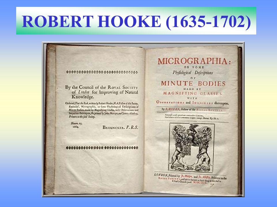 A los 28 años publicó Micrographia con 57 imágenes naturales entre ellas el corcho Flea (Hooke)