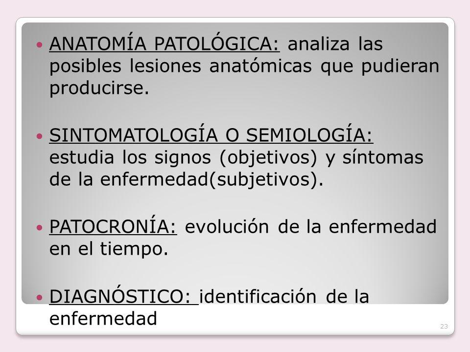 ANATOMÍA PATOLÓGICA: analiza las posibles lesiones anatómicas que pudieran producirse. SINTOMATOLOGÍA O SEMIOLOGÍA: estudia los signos (objetivos) y s