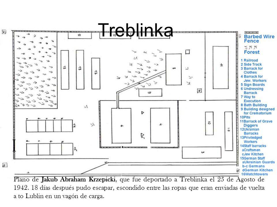 Treblinka Plano de Jakub Abraham Krzepicki, que fue deportado a Treblinka el 25 de Agosto de 1942. 18 días después pudo escapar, escondido entre las r