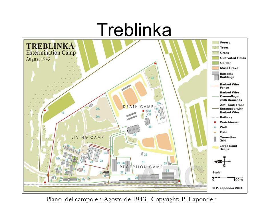 Treblinka Plano del campo en Agosto de 1943. Copyright: P. Laponder