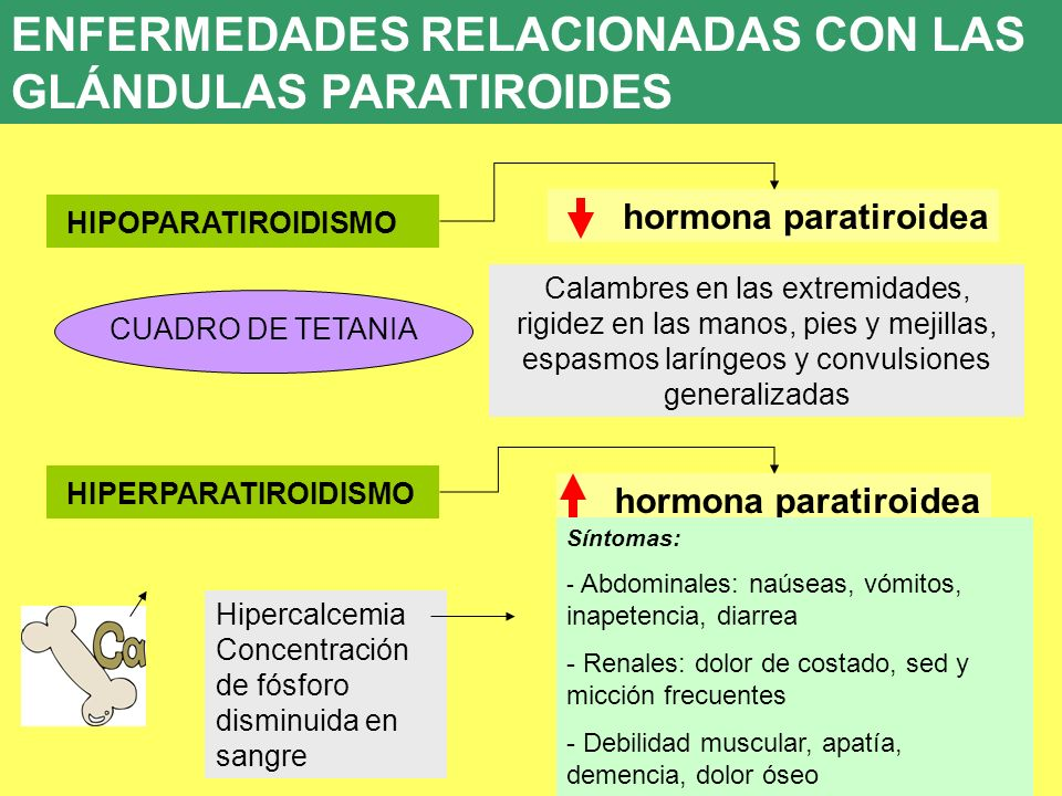 UD 7 hormona paratiroidea 8. ENFERMEDADES ENDOCRINAS HIPOPARATIROIDISMO CUADRO DE TETANIA Calambres en las extremidades, rigidez en las manos, pies y