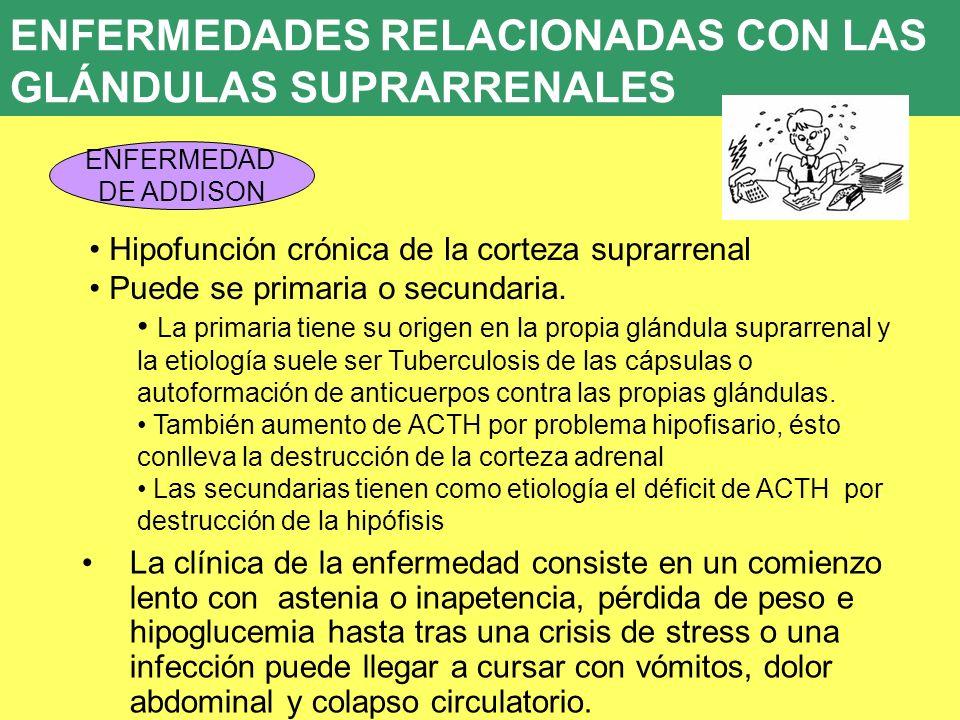 UD 7 ENFERMEDADES RELACIONADAS CON LAS GLÁNDULAS SUPRARRENALES ENFERMEDAD DE ADDISON Hipofunción crónica de la corteza suprarrenal Puede se primaria o