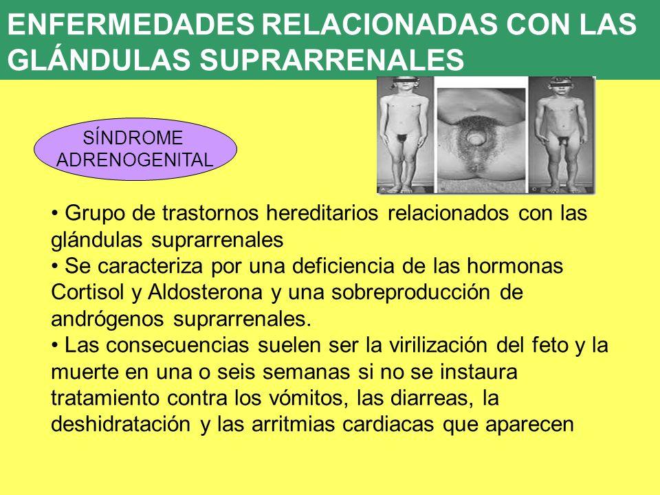 UD 7 ENFERMEDADES RELACIONADAS CON LAS GLÁNDULAS SUPRARRENALES SÍNDROME ADRENOGENITAL Grupo de trastornos hereditarios relacionados con las glándulas