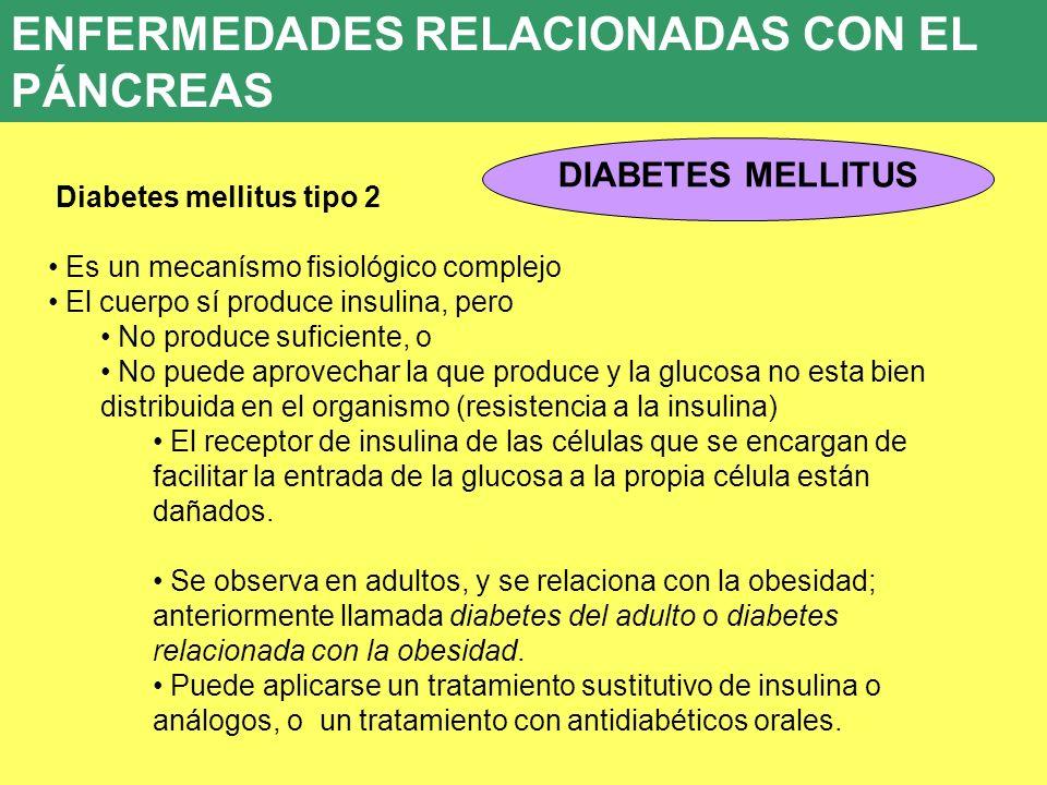 8. ENFERMEDADES ENDOCRINAS 8.5. PATOLOGÍA DEL PÁNCREAS ENDOCRINO DIABETES MELLITUS ENFERMEDADES RELACIONADAS CON EL PÁNCREAS Diabetes mellitus tipo 2