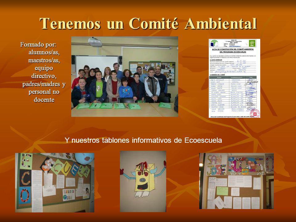 Tenemos un Comité Ambiental Formado por: alumnos/as, maestros/as, equipo directivo, padres/madres y personal no docente Y nuestros tablones informativ