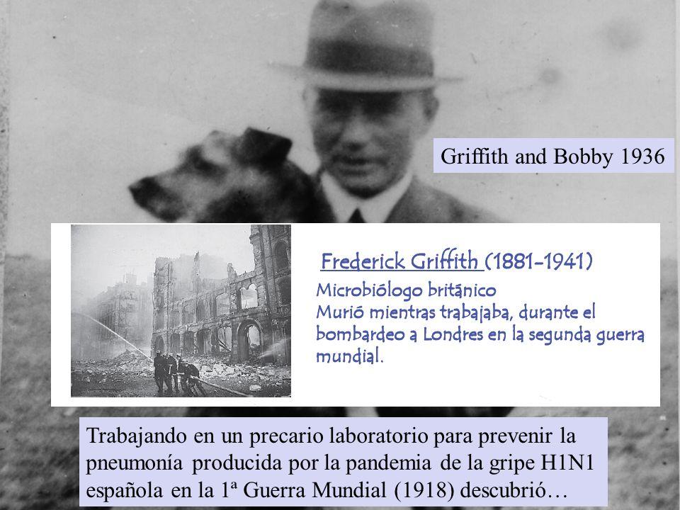 Trabajando en un precario laboratorio para prevenir la pneumonía producida por la pandemia de la gripe H1N1 española en la 1ª Guerra Mundial (1918) de