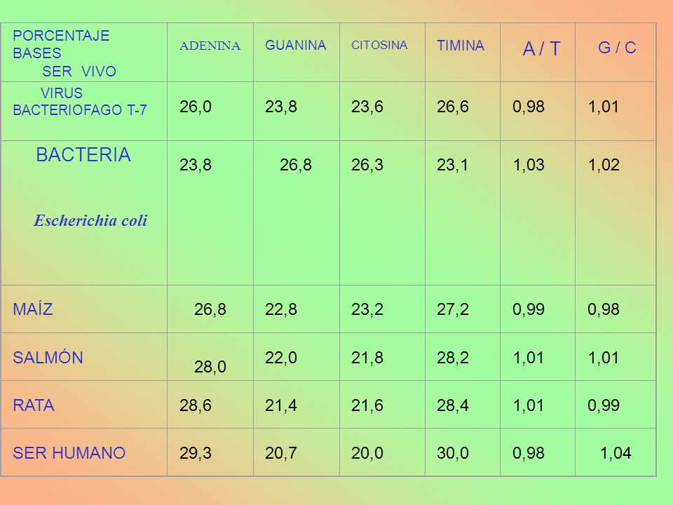 B.-NUCLEOTIDOS MENSAJEROS AMP CÍCLICO 6.3.- NUCLEÓTIDOS Y DINUCLEÓTIDOS NO NUCLEICOS