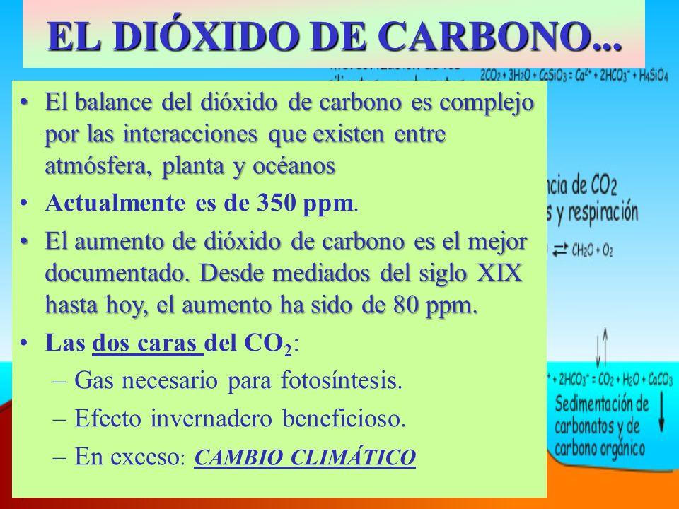 EL DIÓXIDO DE CARBONO... El balance del dióxido de carbono es complejo por las interacciones que existen entre atmósfera, planta y océanosEl balance d