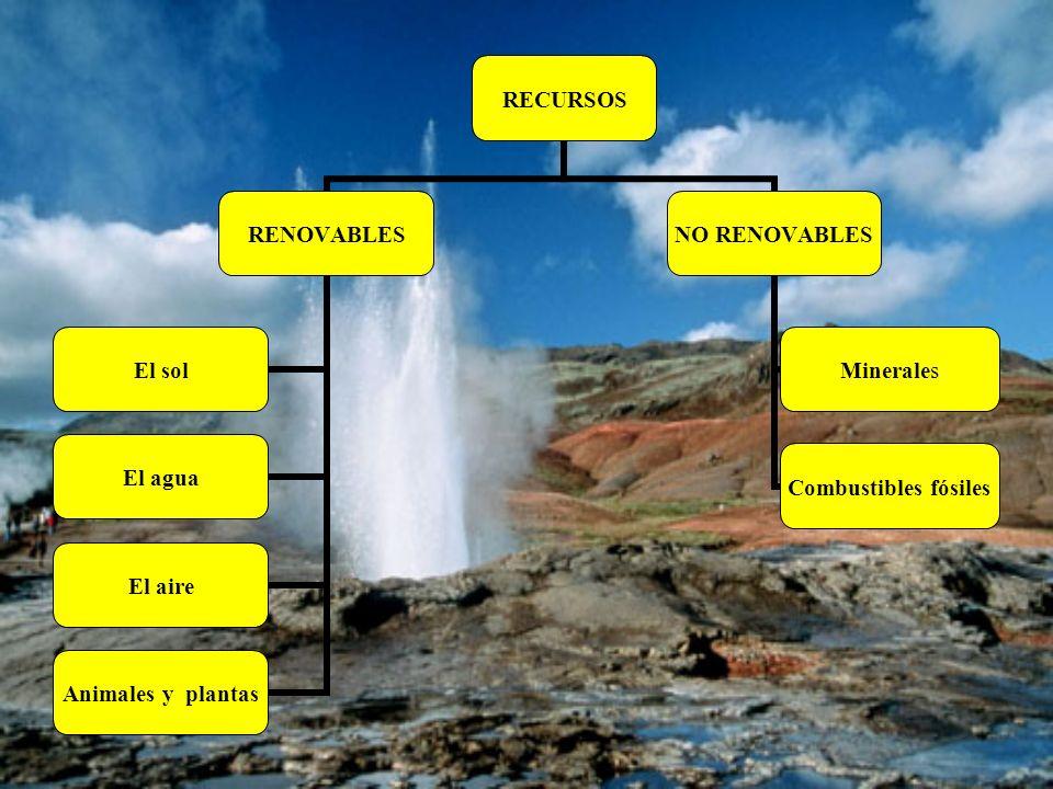 RECURSOS RENOVABLES El solEl aguaEl aireAnimales y plantas NO RENOVABLES Combustibles fósilesMinerales