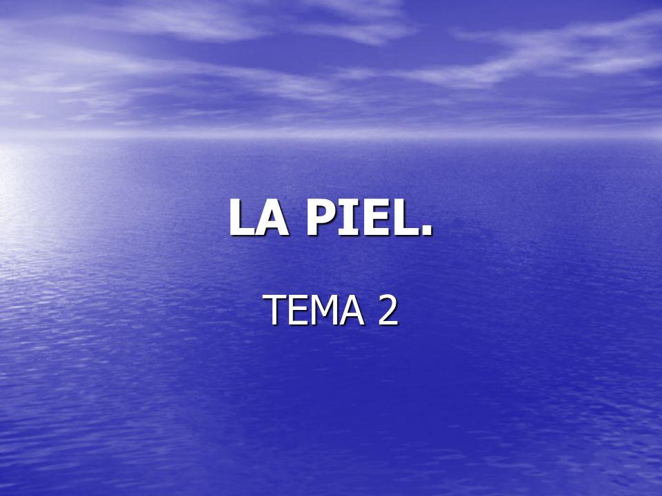 LA PIEL. TEMA 2