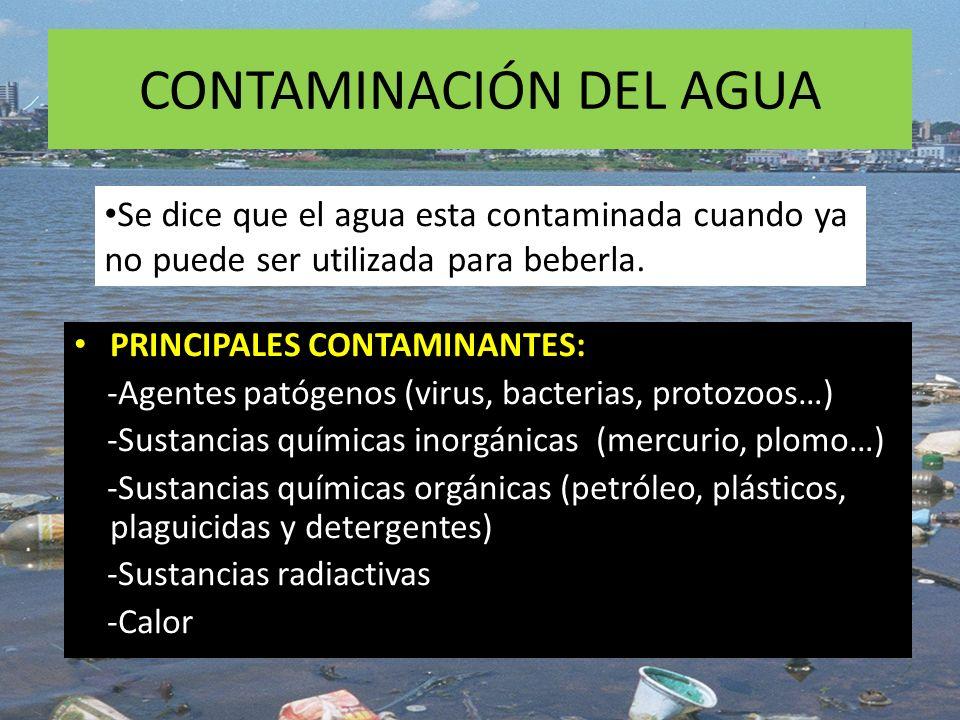 CONTAMINACIÓN DEL AGUA PRINCIPALES CONTAMINANTES: -Agentes patógenos (virus, bacterias, protozoos…) -Sustancias químicas inorgánicas (mercurio, plomo…