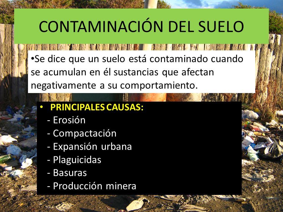 CONTAMINACIÓN DEL SUELO Se dice que un suelo está contaminado cuando se acumulan en él sustancias que afectan negativamente a su comportamiento. PRINC