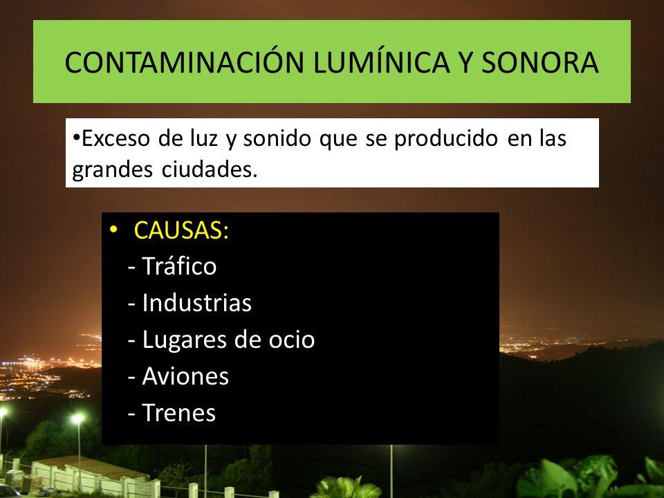 CONTAMINACIÓN LUMÍNICA Y SONORA CAUSAS: - Tráfico - Industrias - Lugares de ocio - Aviones - Trenes Exceso de luz y sonido que se producido en las gra