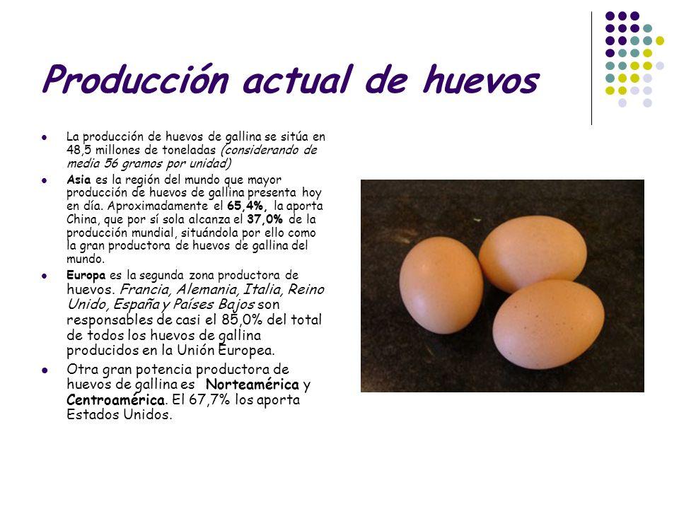 Producción actual de huevos La producción de huevos de gallina se sitúa en 48,5 millones de toneladas (considerando de media 56 gramos por unidad) Asi