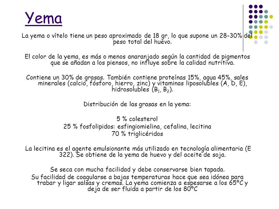 Yema La yema o vítelo tiene un peso aproximado de 18 gr, lo que supone un 28-30% del peso total del huevo. El color de la yema, es más o menos anaranj