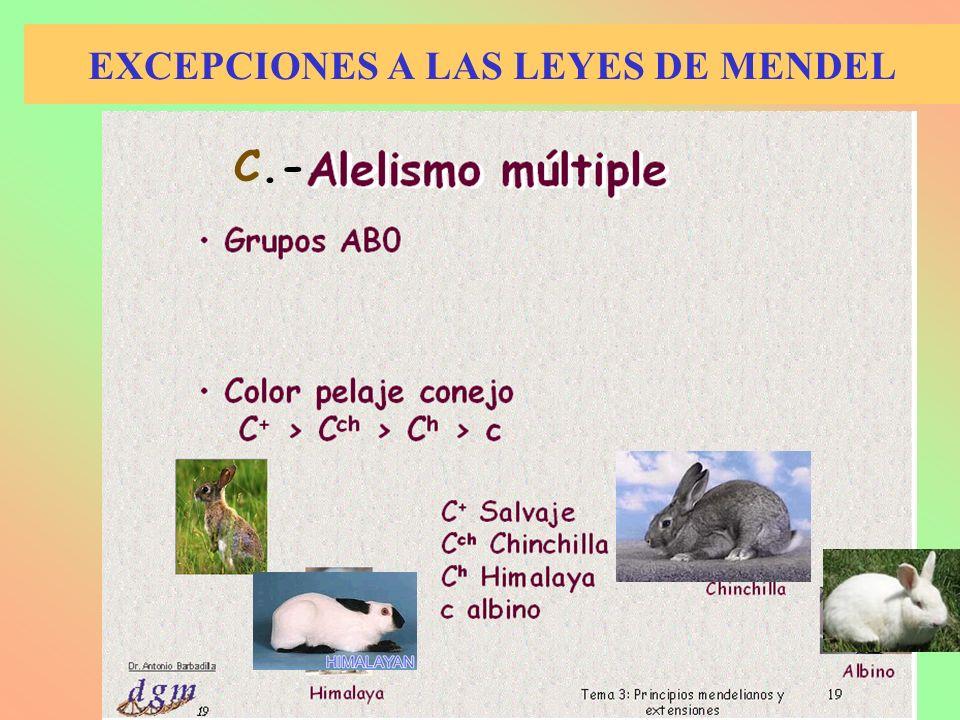 EXCEPCIONES A LAS LEYES DE MENDEL C.-