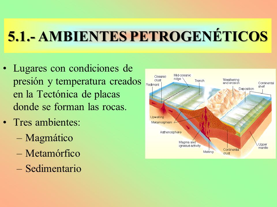 5.1.- AMBIENTES PETROGENÉTICOS Lugares con condiciones de presión y temperatura creados en la Tectónica de placas donde se forman las rocas. Tres ambi