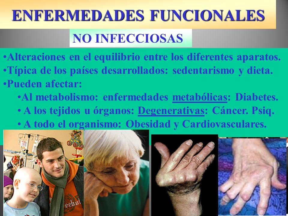 ENFERMEDADES FUNCIONALES ENDOCRINAS-METABÓLICAS Diabetes mellitus: Páncreas y la insulina.