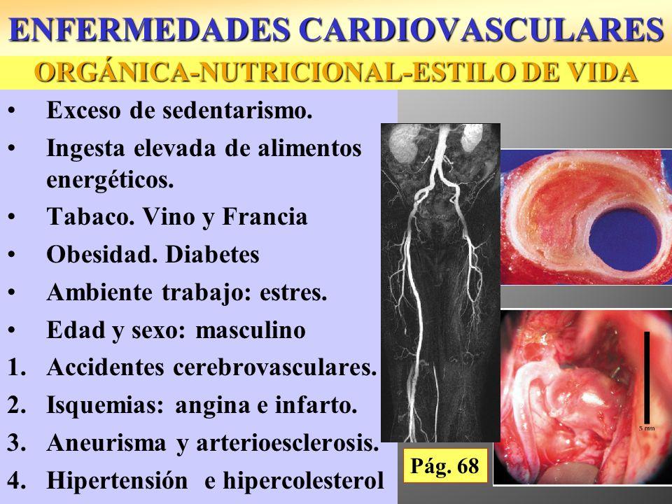 ORGÁNICA-NUTRICIONAL-ESTILO DE VIDA Exceso de sedentarismo. Ingesta elevada de alimentos energéticos. Tabaco. Vino y Francia Obesidad. Diabetes Ambien