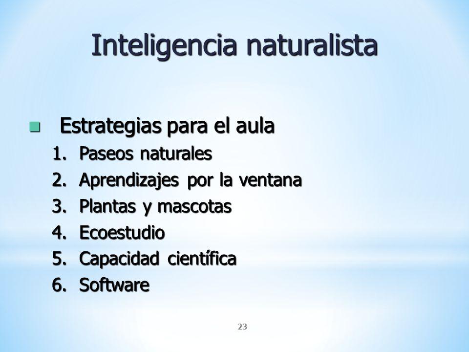 23 Inteligencia naturalista Estrategias para el aula Estrategias para el aula 1.Paseos naturales 2.Aprendizajes por la ventana 3.Plantas y mascotas 4.