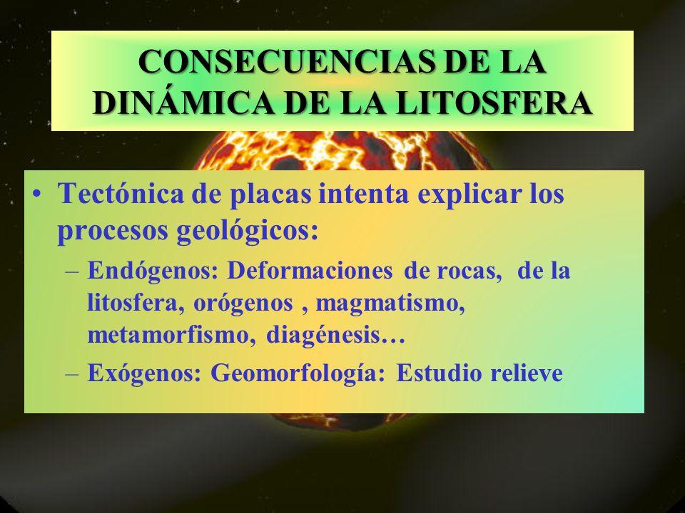CONSECUENCIAS DE LA DINÁMICA DE LA LITOSFERA Tectónica de placas intenta explicar los procesos geológicos: –Endógenos: Deformaciones de rocas, de la litosfera, orógenos, magmatismo, metamorfismo, diagénesis… –Exógenos: Geomorfología: Estudio relieve