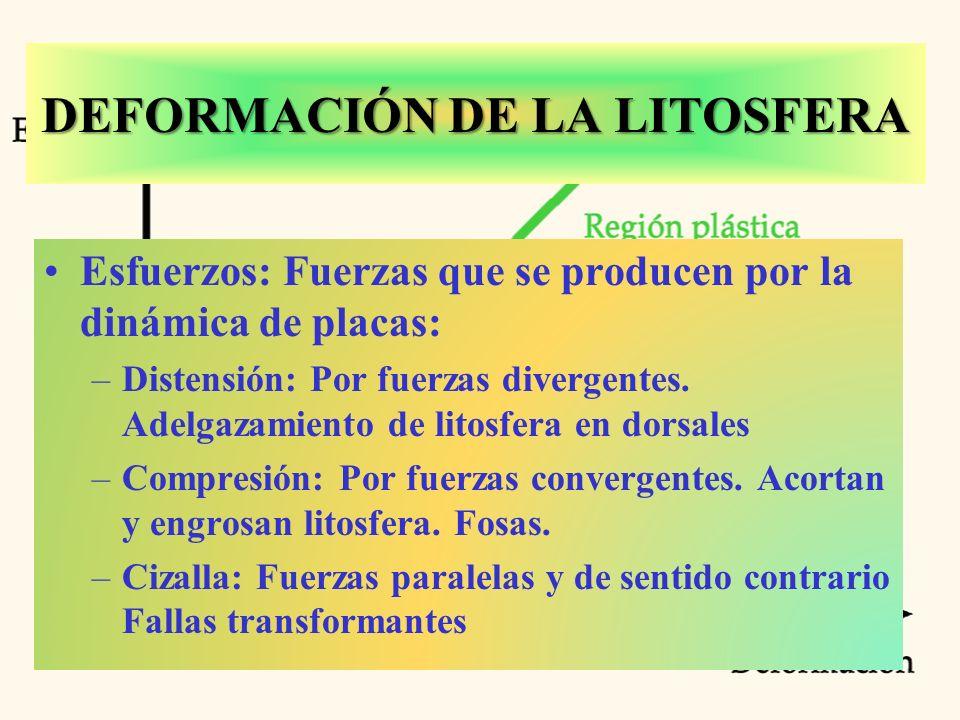 DEFORMACIÓN DE LA LITOSFERA Esfuerzos: Fuerzas que se producen por la dinámica de placas: –Distensión: Por fuerzas divergentes.