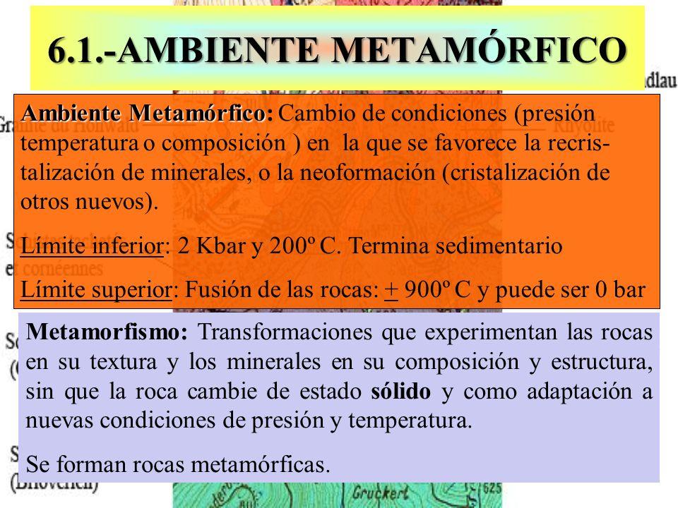 Metamorfismo: Transformaciones que experimentan las rocas en su textura y los minerales en su composición y estructura, sin que la roca cambie de esta