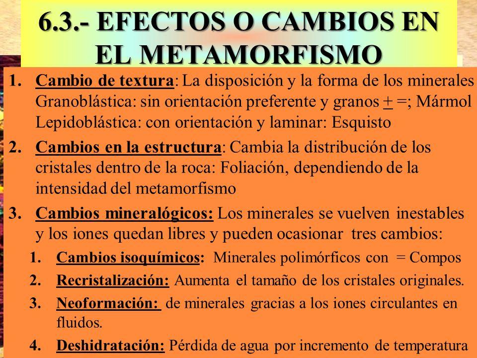 6.3.- EFECTOS O CAMBIOS EN EL METAMORFISMO Blastesis: Aumento de tamaño 1.Cambio de textura: La disposición y la forma de los minerales Granoblástica: