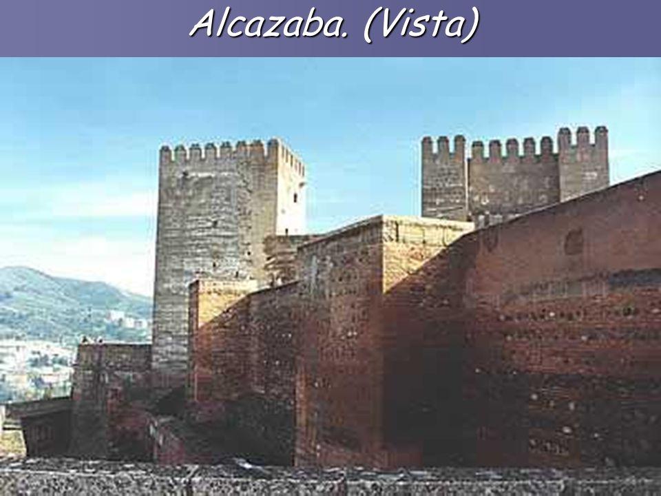 Alcazaba. (Vista)